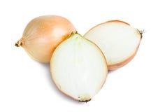 Fresh onion bulbs Stock Image