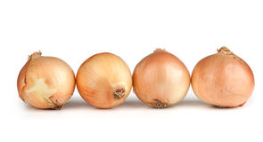 Fresh onion bulbs Stock Photos
