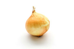 Fresh onion bulbs isolated on white background Royalty Free Stock Photos