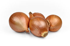 Fresh onion bulbs isolated on white background, clipping path in Stock Photo