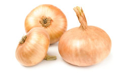 Fresh onion bulbs Royalty Free Stock Images