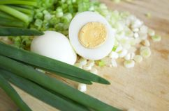 Fresh onion with egg Stock Photo