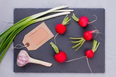 Fresh onion, garlic and red radishes. Assortment of organic vegetables and cardboard label, top view. Benefits of eating organic Stock Photography