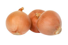 Fresh onion Group Stock Images