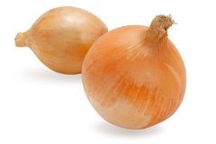 Fresh onion isolated on white Royalty Free Stock Photo