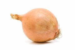 Fresh onion isolated on white background Royalty Free Stock Photo