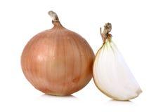 Fresh Onion isolated on white background Stock Photos