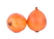 Fresh onion isolated on white background Stock Photography