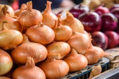 Fresh onion at the market.  Royalty Free Stock Images