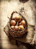 Fresh onion in an old basket. Royalty Free Stock Image