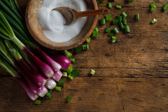 Fresh onion with old salt recipient Royalty Free Stock Photo