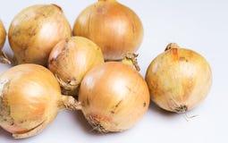 Fresh onion. Over white background Stock Photo