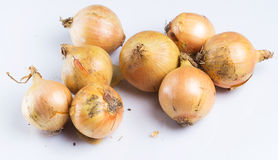 Fresh onion. Over white background Stock Images