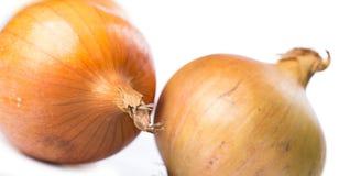 Fresh onion. Over white background Stock Photos