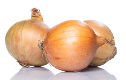 Fresh onion. Over white background Royalty Free Stock Images