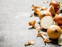 Fresh onion on stone background. Stock Photo