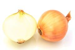 Fresh  onion  on   white background Royalty Free Stock Image