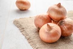 Fresh onion on wooden background and on burlap. Ripe onions Allium cepa or onions or vegetarian and vegan food royalty free stock photos