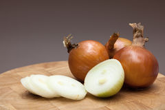 Fresh onions royalty free stock photos