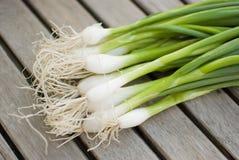 Fresh onions Stock Photos