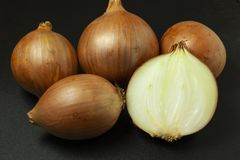 Onion on black background royalty free stock photography