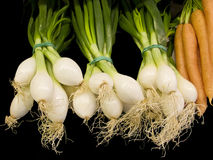 Fresh onions and carrots Stock Photos