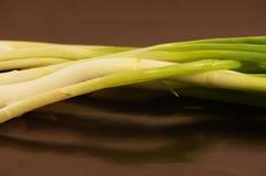 Fresh onions Stock Image