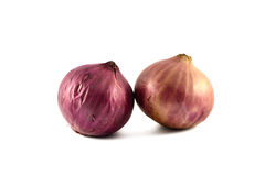 Fresh onions. A pair of fresh onions isolated on white background stock image