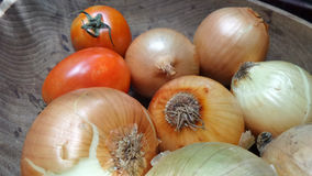 Fresh onions and red tomato in wooden bowl for cooking soup Royalty Free Stock Photos