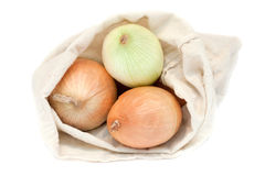 Fresh onions in a sack Royalty Free Stock Photo