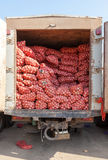 Fresh onions for sale at the market Stock Photography