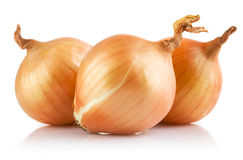 fresh onions vegetables royalty free stock photos