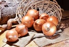 Fresh onions vegetables . Stock Photos