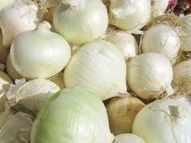 Fresh onions Royalty Free Stock Photography