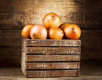 Fresh onions in wooden box Royalty Free Stock Images