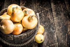 Fresh onions in a wooden bucket. Stock Photo