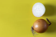 Fresh onions Stock Photos