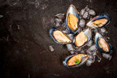 Fresh opened mussels on ice. Prepared for cooking dinner seafood - fresh opened mussels on ice, on black concrete table, with lemon and seasonings. Top view Stock Photo