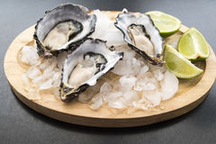 Fresh opened oyster. Served with lime on darck background Royalty Free Stock Photos