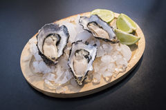 Fresh opened oyster. Served with lime on darck background Stock Image
