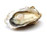 Fresh opened oyster. On white background Stock Image