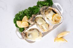 Fresh opened oysters on a white plate. Selective focus.  Stock Photo