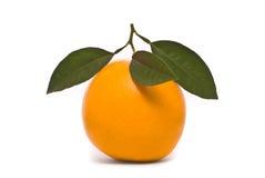 Fresh orange. Royalty Free Stock Images