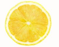 Fresh orange. Slice isolated on white background Stock Photos