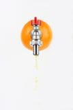 Fresh orange Royalty Free Stock Images