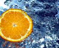 Fresh orange Stock Photography