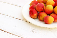 Fresh orange apricots. With plate on white wooden background Stock Image
