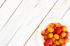 Fresh orange apricots. On white wooden background with copy space Royalty Free Stock Image