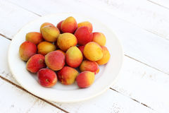 Fresh orange apricots on white wooden background. Diet food Stock Images