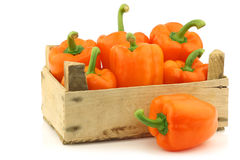 Fresh orange bell peppers and a cut one Royalty Free Stock Photo